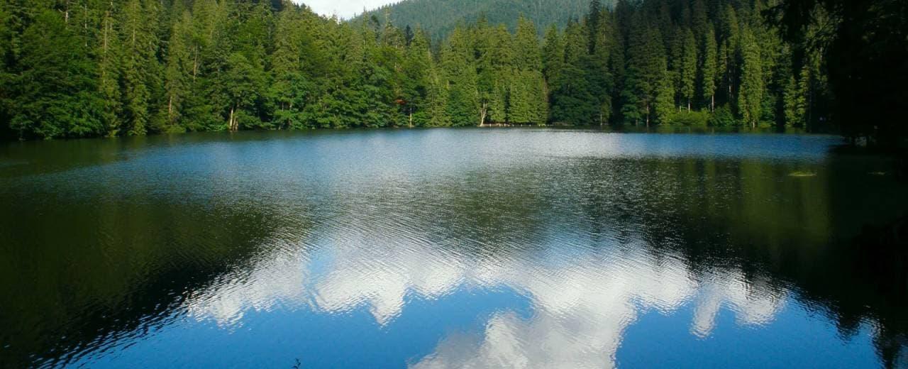 Жемчужина украинских Карпат - озеро Синевир. Отзывы