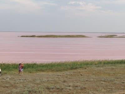 Розовые озера - красиво и полезно. Здесь можно целыми днями сидеть на берегу и наблюдать за удивительными водами, при этом становясь всё здоровее!
