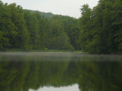 Возле Шелеховского озера вам гарантирован спокойный отдых - толп туристов здесь нет, вода чистая и незамутненная.