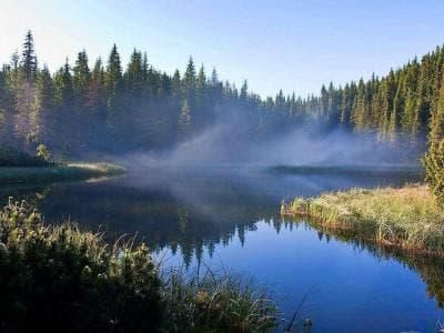 Сказочное тихое озеро Маричейка в Ивано-Франковских Карпатах. Отзывы посетителей.